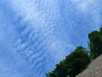 池田のかずら橋と龍双ヶ滝へ | Webikeツーリング