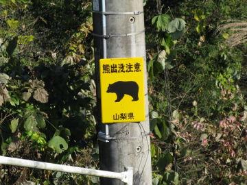 2014/11/16 上野原IC~県道35号 林道支線2+ラーoff | Webikeツーリング