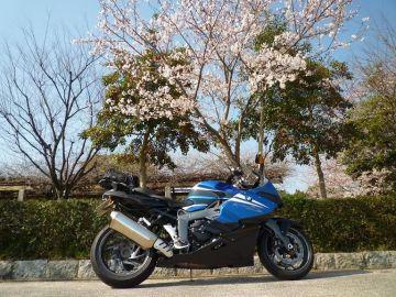 ひょうたん桜(^^! | Webikeツーリング