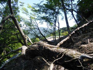 今年も行きました椎葉村(内大臣林道レポート) | Webikeツーリング
