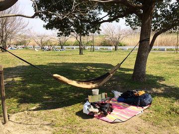 花見@代々木、光が丘、彩湖 | Webikeツーリング