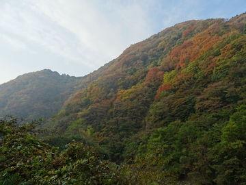 大坂府道6号線から国372、175号線で日本海方面、雨のため福知山で断念。 | Webikeツーリング