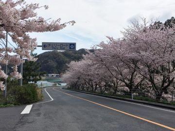 島根半島エメラルドロード Vol.5 | Webikeツーリング