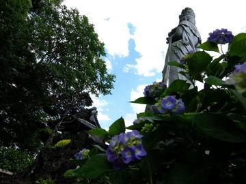 梅雨入り準備&早めの能護寺(紫陽花) | Webikeツーリング