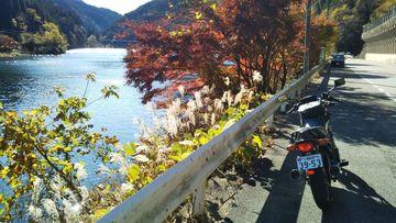 小牧市から下呂のジョイフルまで日替わりランチを食べに行ってきた。 | Webikeツーリング