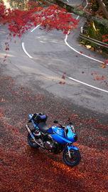 秋の紅葉ツーリング第二弾!! 吉野山紅葉ツーリング♪ | Webikeツーリング