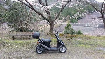 桜満開♪明神湖・シェイクダウンテスト@スーパーディオ(AF27) | Webikeツーリング