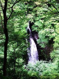 小中側入り口~小中大滝までの区間、「通行止め解除」のお知らせ。 | Webikeツーリング