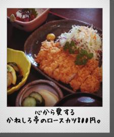 349(サンヨンキュー)で昼食を | Webikeツーリング
