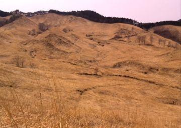 砥峰高原の山焼き | Webikeツーリング