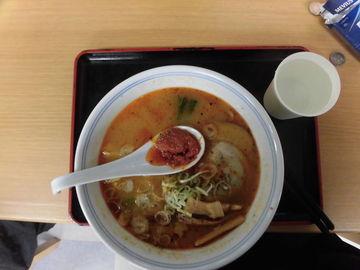 北海道からの帰りの昼食(北海道で食べられず地元のラーメンとなりました) | Webikeツーリング