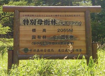 標高2055Mの林道と、嬬恋パノラマ道路南ルート | Webikeツーリング