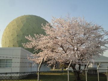 桜とメロンとCBと | Webikeツーリング