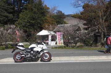 東名・大井松田IC近辺のお雛様&パワースポットを!♪   Webikeツーリング