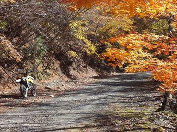 剣山スーパー林道 日帰りソロツーリング | Webikeツーリング