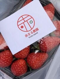 イチゴを買ってきたツーリング   Webikeツーリング