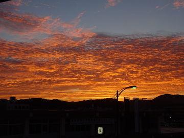 出雲大社・鳥取砂丘で京都に(3日目です。) | Webikeツーリング
