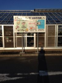 道の駅 白浜野島崎 | Webikeツーリング