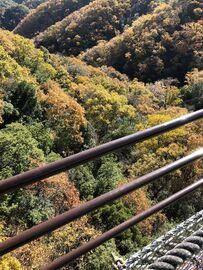 カブ2台で大阪府交野市にある「ほしだ園地 星のブランコ」へ行ってきた   Webikeツーリング