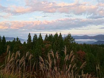 朝飯前に雲海 | Webikeツーリング