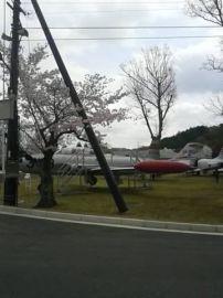 桜と飛行機を合わせて見物 | Webikeツーリング
