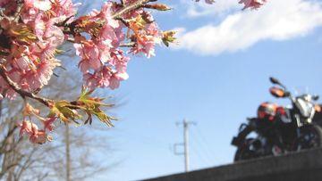 久々のピーカン日和、大井町の里山を流してたら絶景に! | Webikeツーリング