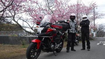 バーチーの房総もちらほらと桜が咲き始めました! KJC活動日記・お花見と温泉♪ | Webikeツーリング