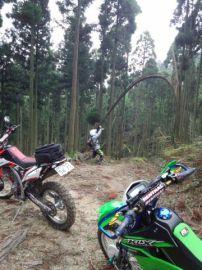 【ツーリング】20151122森へ一緒にどうですか? | Webikeツーリング