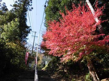 2018聖宝寺もみじ祭り~軽便鉄道ナローゲージ北勢線沿線ツーリング(三重県) | Webikeツーリング