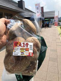 松江水郷祭   Webikeツーリング