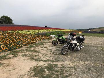 北海道3日目静内から南富良野経由旭川   Webikeツーリング