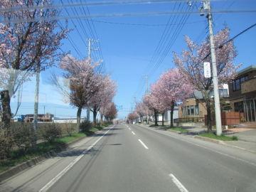 道東・美幌峠~屈斜路湖一周ツーリング | Webikeツーリング