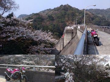 雪浦ダム~西海の丘展望所 | Webikeツーリング