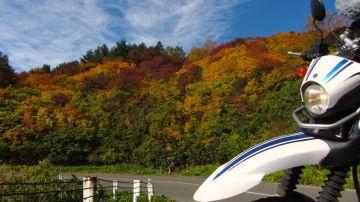 福島へ紅葉を見に行こう | Webikeツーリング