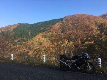 貴重な秋の晴天。峠を走れるのも、もう少しですね。 | Webikeツーリング