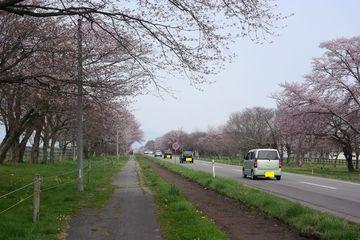 2018GW~北の桜と・・・~   Webikeツーリング