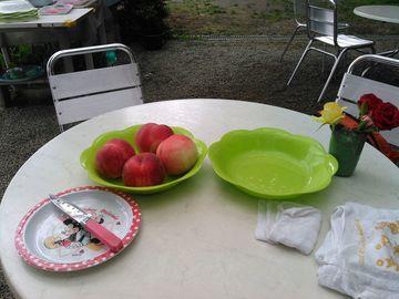 今週も山梨県まで桃食べに行って風呂入ってバラ見てきた | Webikeツーリング