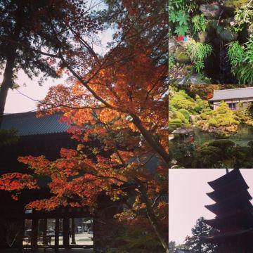 身延山久遠寺ツーリング | Webikeツーリング