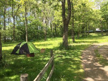 ビーナスラインでキャンプツーリング | Webikeツーリング