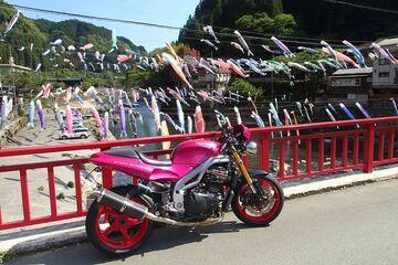 955i 鯉のぼり祭りin杖立温泉 | Webikeツーリング