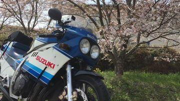 桜×GSX-R750 写真をいっぱい撮る動画 | Webikeツーリング