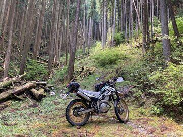 静岡県天竜方面林道へ | Webikeツーリング