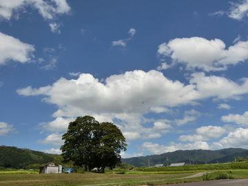 今日も暑い一日でしたね、はいVGは今日もダムに走って来ました伊賀の外れまで暑かった!! | Webikeツーリング