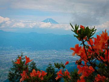季節限定『レンゲつつじ』と『富士山』を一緒に見られます♪ | Webikeツーリング
