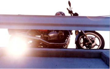 赤ベコ~Tシャツでバイクに乗ったり、居眠りしちゃダメよ!! | Webikeツーリング