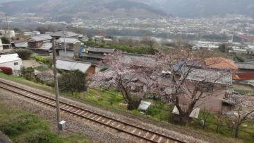 徳島 三好市から大歩危へ。 | Webikeツーリング