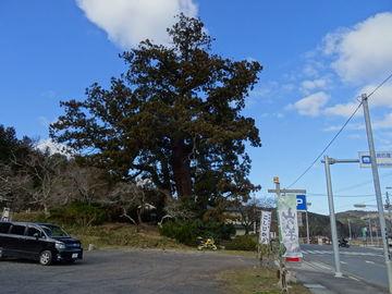 国道173号線から美山&ウッディ京北で国道477号線(定番?でも冬期はチャレンジ) | Webikeツーリング