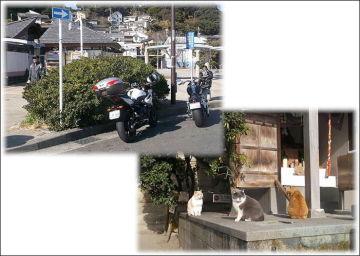 海軍カレーを求め横須賀までツーリング!(艦船もあるでよ~!) | Webikeツーリング