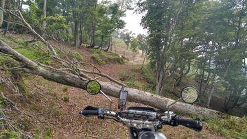 ブログ更新 オートバイの旅 justa2ofus-kzblues.com 「ローライダーS の砂利場ゴケ現場検証にシェルパで行ってみた。その前後に根尾の林道と高倉峠へ。2021.6.12(土) その2」 | Webikeツーリング