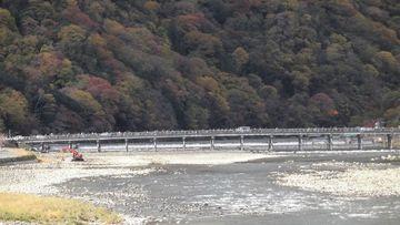 【紅葉】渡月橋~周山街道ずーとひとり! | Webikeツーリング